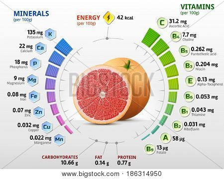Vitamins and minerals of grapefruit fruit. Infographics about nutrients in raw grapefruit. Best vector illustration for fruits vitamins agriculture health food nutrients diet etc