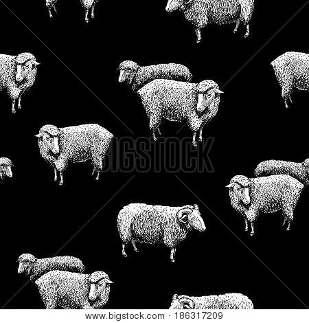 Seamless pattern with sheep. Vector illustration in vintage engraved style on black background.