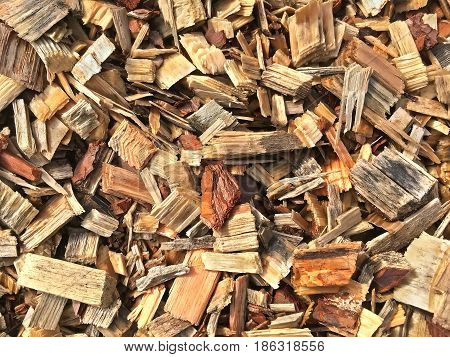 Background is composed of wood shavings and wooden splinters closeup