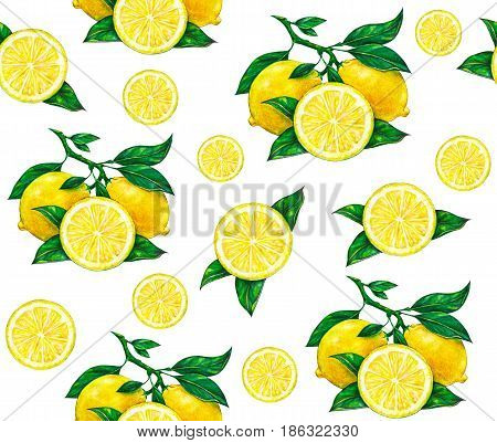 Great illustration of beautiful yellow lemon fruits isolated on white background. Water color drawing of lemon. Seamless pattern