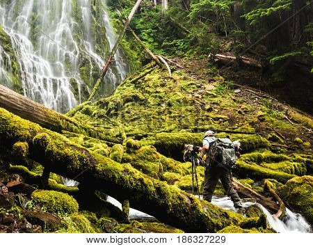 Photographer standing in the water below a waterfall in a lush green Pacific Northwest location. Proxy Falls Oregon USA.