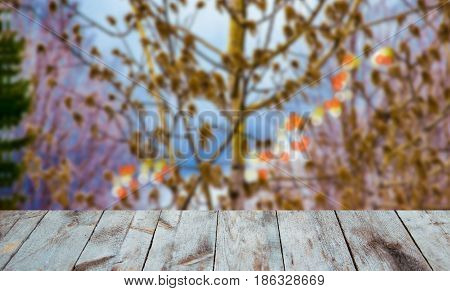 The image wooden table in front of an abstract blue and brown blurred background of the flourishing aspen
