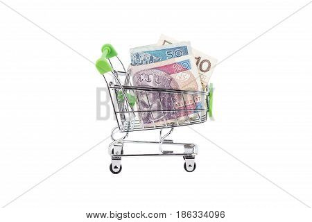 Polish Zloty In The Shopping Pushcart, Isolated