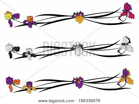 vector floral set of dividers with irises