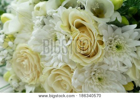 white fresh roses, freesia and mum flowers bouquet background