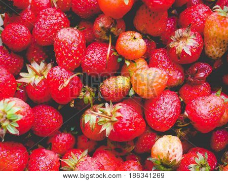 Strawberry Fruits Detail, Faded Vintage Look