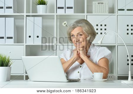 Old business woman with laptop working in the office