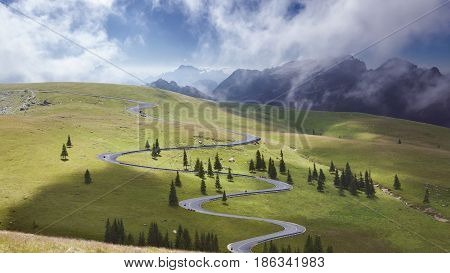 Winding asphalt road at fresh morning through spruce trees on idyllic green fields.
