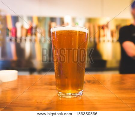 Pint glass filled with bright golden beer set on a bar with a row of beer taps in the background.