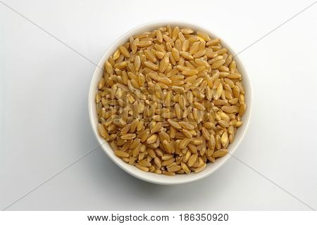 Cup of wheat isolated on white (Photo taken on white background)