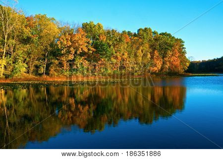 Near sunset in mid-autumn by a lake in Southwestern Michigan.