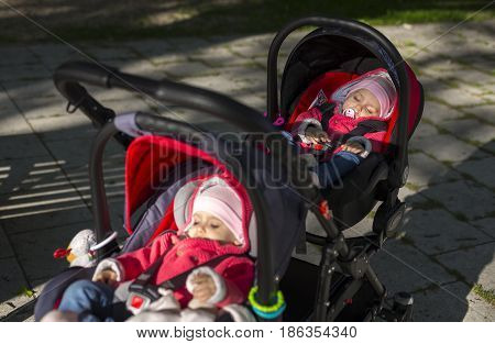 Adorable sleeping twins baby in double stroller in park. Outdoors in cold weather.