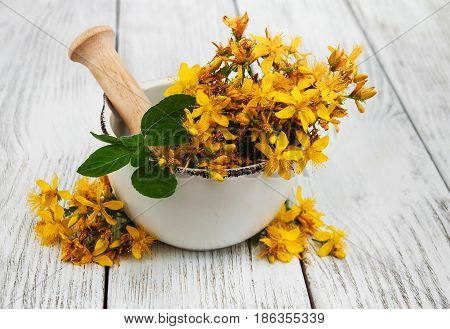Saint-john's-wort In The Mortar