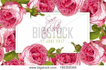 Vector wedding invitation horizontal card with garden rose flowers on white background. Can be used as floral design for cosmetics, perfume, health care products, sweets packaging, greeting card