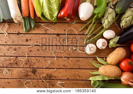 Assortment Vegetables Around A Wood Table Top View