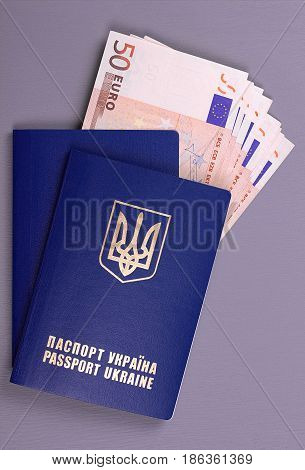 International Ukrainian Passport With Euro Banknotes Isolated On Gray Background.
