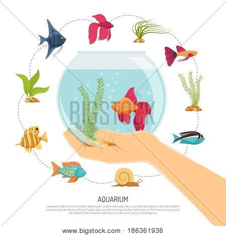 Aquarium background with flat images of various fish species and sea weed with editable text description vector illustration