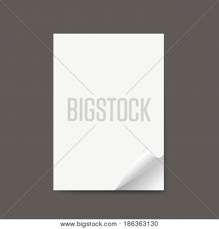 Isolated realistic empty vector paper banners with curled corner with shadow. Mock up.