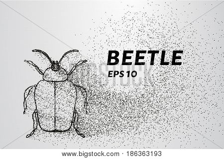 Beetle Of The Particles. Beetle Consists Of Small Circles And Dots. Vector Illustration.