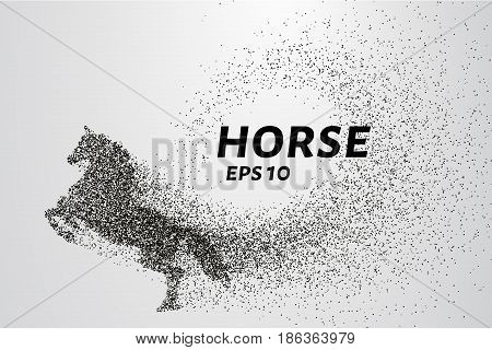 Horse Of The Particles. The Horse Consists Of Small Circles And Dots. Vector Illustration.