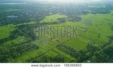 Beautiful aerial view of green rice field and village in Majalengka West Java Indonesia