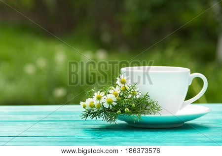 A cup of fragrant chamomile tea in the garden. A useful hot drink with chamomile flowers. Natural medicine. Copy space