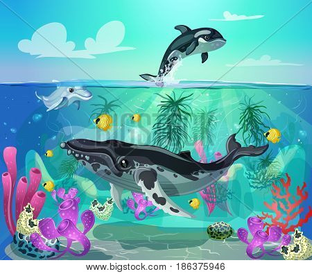 Cartoon colorful sea life background with gray whale dolphin orca fishes and marine plants vector illustration