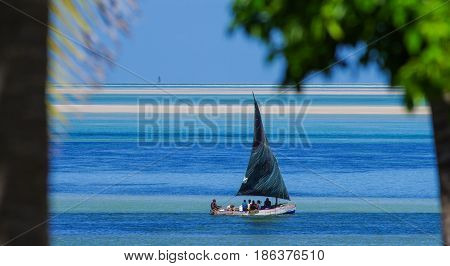 Traditional fishing boat in Mozambique coast between palm trees