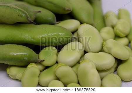 Close up view on Vicia faba or Faba bean...pod and beans