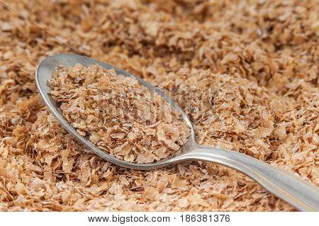 A spoonful of wheat bran (Triticum aestivum)