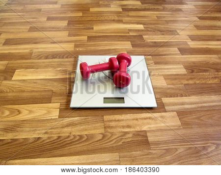 Two red dumbbells lie on the gray electronic scales. It's a hint that it's time to lose weight
