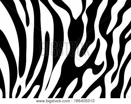zebra texture Black and White abstract illustration