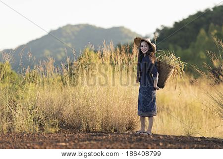 Beautiful Thai local woman working happy in the field,outdoor,Thailand
