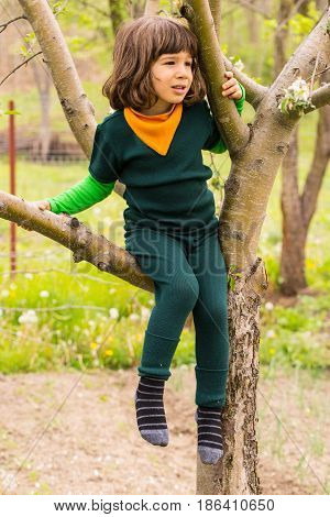 Little child boy climbing in the tree looking away
