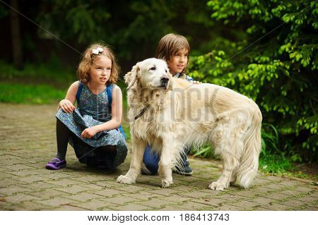 Little schoolchildren meet on the way to school a large dog. Good-natured retriever drew the children's attention. Children squatted down next to cute dog.