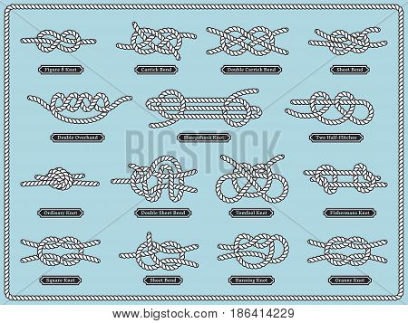 Sailing rope knots. Vector set of nautical design elements. Knot rope bowline, illustration of decorative double sailing knot