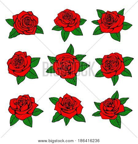 Red roses with green leaves vector design for tattoo. Nature red rose, with green leaf, illustration of rose tattoo