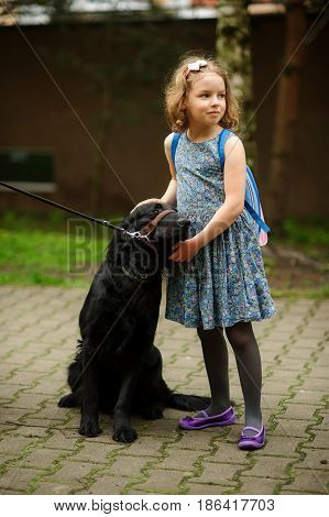 Little schoolgirl caressing a big black dog sitting on a leash. Dog trustfully nestles on the child.