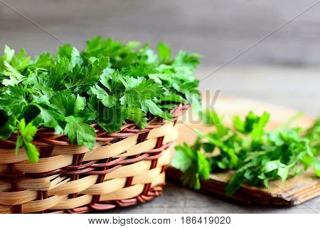 Parsley sprigs in a wicker basket and a wooden board. Garden parsley plant cultivated as a herb, a spice and a vegetable. Natural source of flavonoid and antioxidants, folic acid, vitamin K, C, A