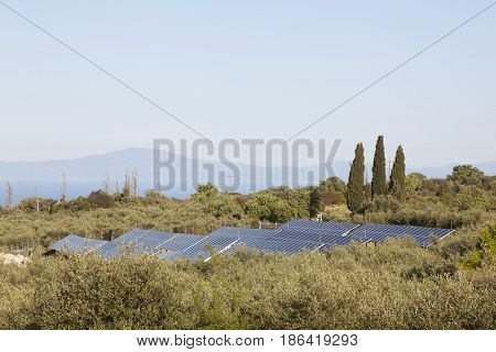 solar panels between olive trees on part of greek peloponnese called Mani with blue sea and distant hills in the background