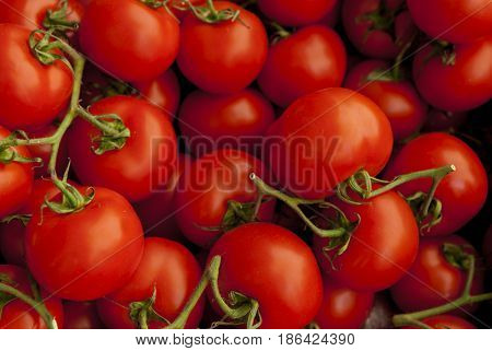 Ripe tasty red tomatoes. Village market organic tomatoes. Fresh tomatoes. Qualitative background from tomatoes.(selective focus)