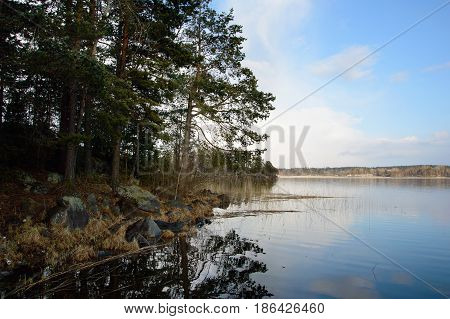 Landscape with a view of the lake and rocky shore. Nature is wild Northern and beautiful places. European wildlife lakes and pines.