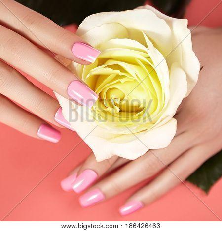 Manicured Nails With Pink Nail Polish. Manicure With Nailpolish. Fashion Art Manicure, Shiny Gel Lac