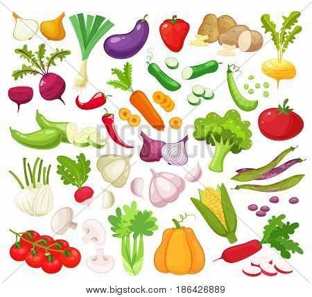 Raw vegetables with sliced isolated realistic icons with pepper eggplant garlic mushroom courgette tomato onion cucumber vector illustration.Set of fresh vegetables for your design