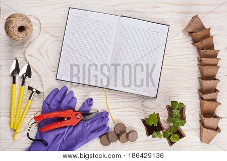 Gardening tools, blank daily log, peat tablets and pots and young seedlings on a wooden background. Concept of spring gardening. Top view with copy space.