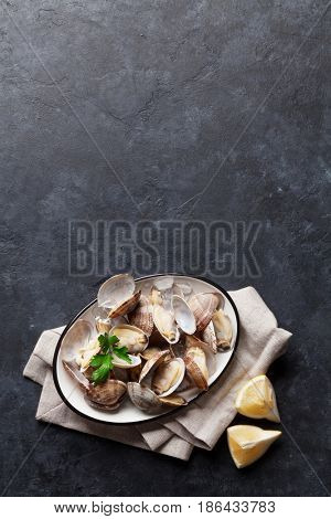 Fresh seafood bowl on stone table. Scallops. Top view with copy space