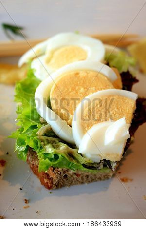 A fresh egg salmon sandwich: smoked salmon lettuce fresh dill and egg