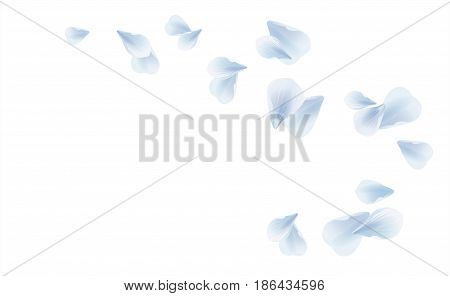 Vector_bg_blue_petals Falling Isolated On White_307.10.eps