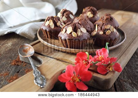 Chocolate muffin almond petals dressing and flowering Japanese quince. Focus selective