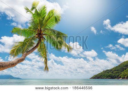 Art Beautiful sunrise over the Caribbean beach